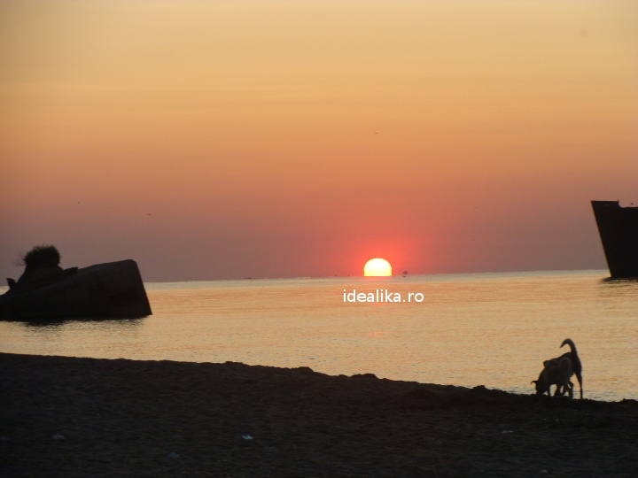 Stavrid proaspat din Marea Neagra