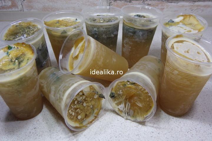 gelatina pentru oase